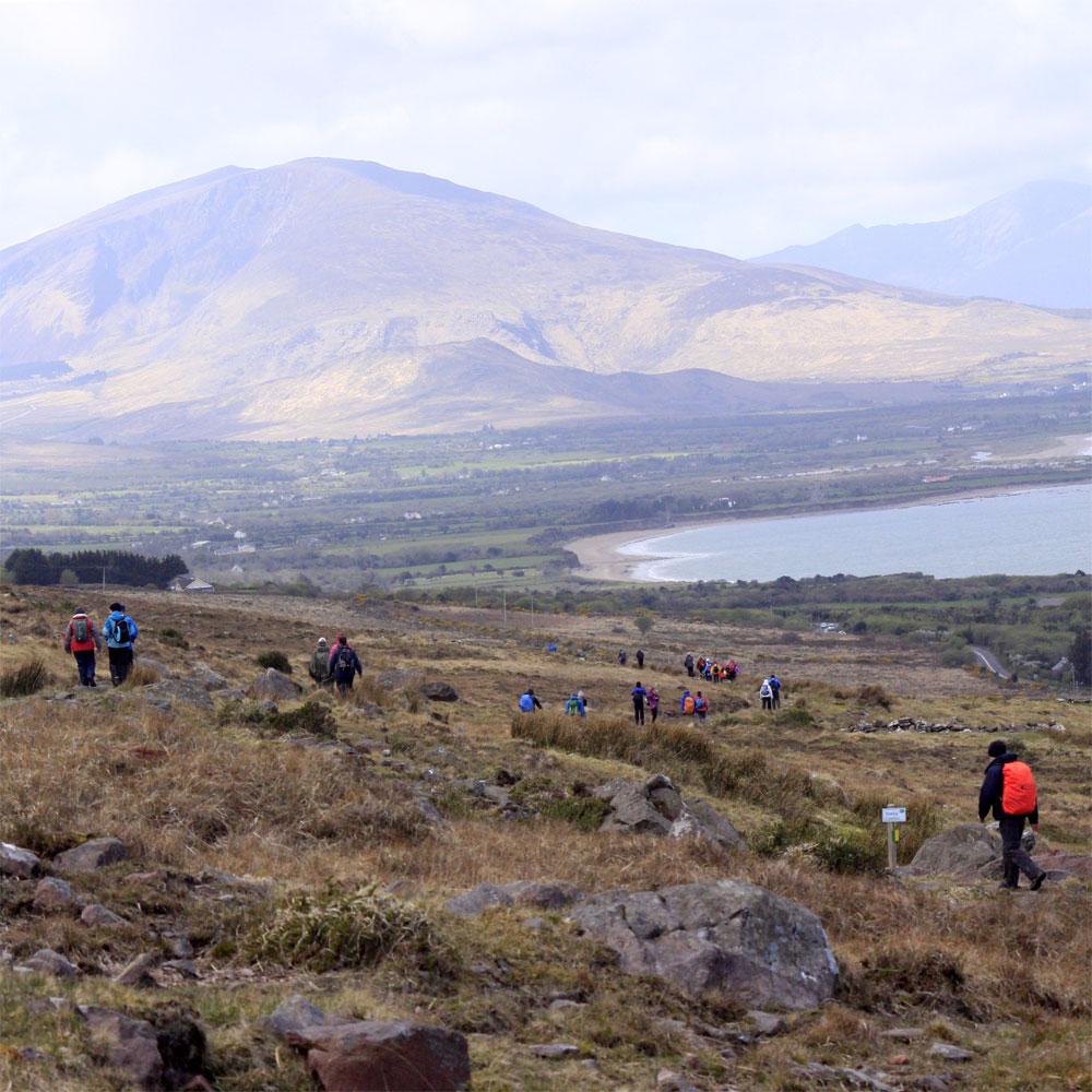 An image of walkers near Derrymore on the Dingle Peninsula Walking on the Kerry Camino Walking weekend